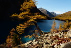 Fall in the Altai Mountains