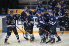 Kontinental Hockey League. Dynamo Moscow vs. Vityaz