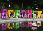 Voronezh City Garden 2017 international exhibition