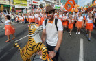 Vladivostok celebrates Tiger Day