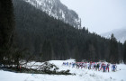 Cross-country skiing. Tour de Ski. Women. Mass start