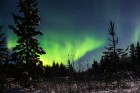 Northern Lights in Murmansk Region