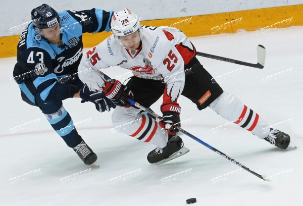 Ice hockey. KHL. Sibir vs. Avangard