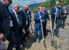Russian-Syrian Friendship Olive Alley planted in Yalta