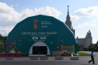 Arranging fan zone for 2018 FIFA World Cup by Moscow State University