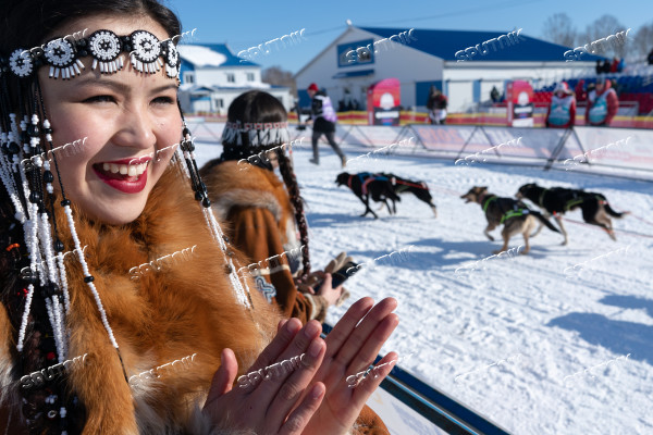Russia Dog Sled Race