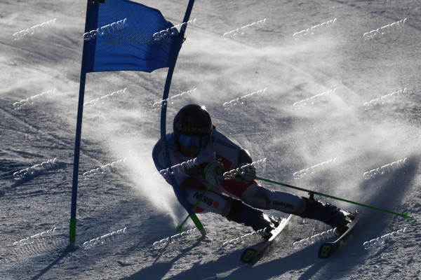 Russia Universiade Alpine Giant Slalom Women