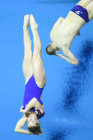 Russia Diving World Series Synchro Mixed