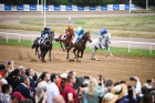 Russia Horse Races