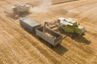 Russia Wheat Harvest
