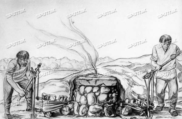 extraction of iron from its ore