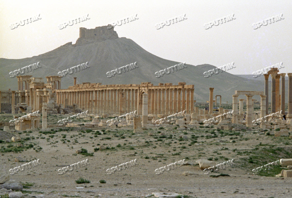 Ruins of the ancient town of Palmyra