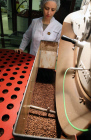 Production of coffee at Soyuz Corporation factory