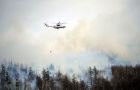 Wildfire in Trans-Baikal Territory