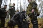 Intergrated gun dog competition im memoriam R.Kalashnikov