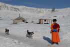 Winter shepherd camps in Republic of Tuva